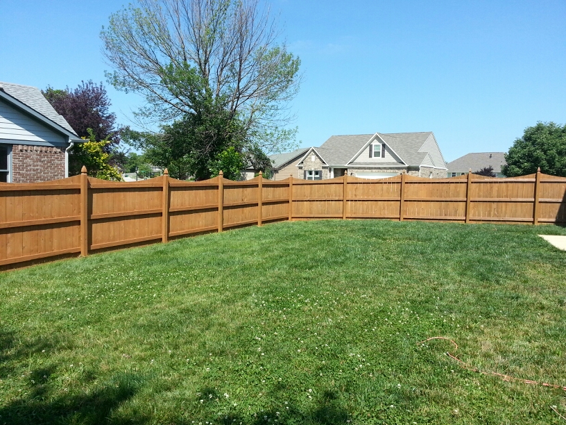 Guy painting fence stainingfence staining guy painting for Oil based fence paint