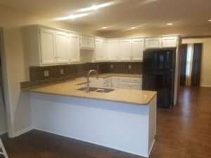 Kitchen cabinet interior painting